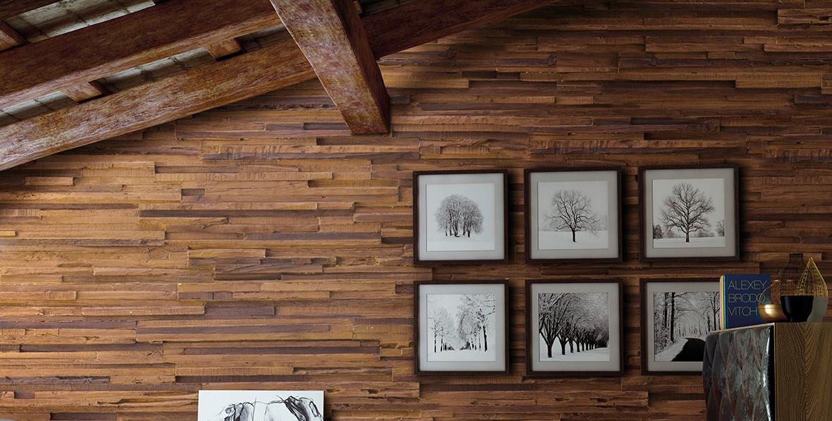 msd madera